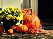 picture of front-entry  - Halloween decorated front door with various size and shape pumpkins - JPG