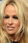 LOS ANGELES - NOV 2:  Pamela Anderson at the Sea Shepherd's Operation Zero Tolerance Antarctic whale