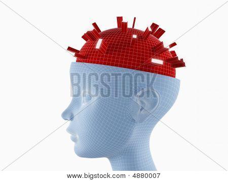 Actividades del cerebro