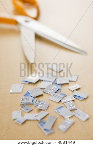 Credit Card In Pieces