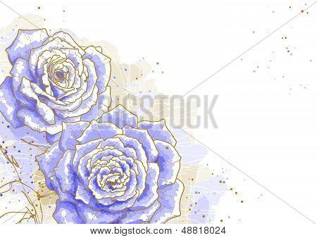 Blue roses on white background