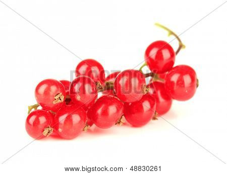 Redcurrants isolated on white