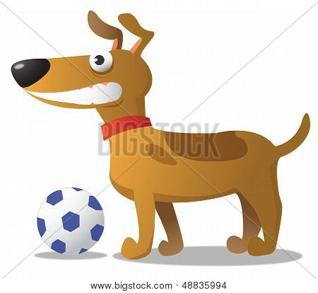 A Funny Dog With A Ball.