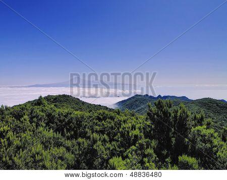 View From Mount Of Garajonay On Gomera