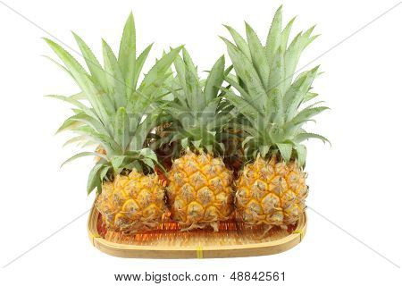 Pineapple In Bamboo For Sale From Thailand