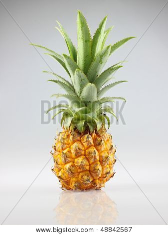 Pineapple For Sale From Thailand