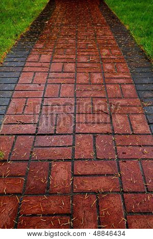 Red Brick path on lawn bordered by grass and diminishing at the top