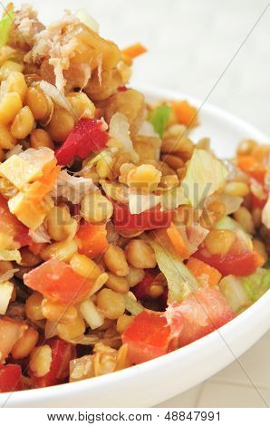 closeup of a bowl with refreshing lentil salad, in a set table