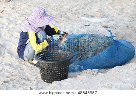 Pescador desempaquetar cangrejo de arrastre