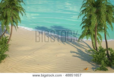 caribbean beach birds eye view
