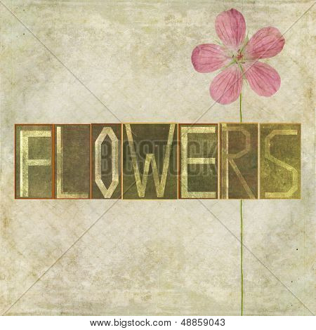 """Earthy background image and design element depicting the word """"Flowers"""""""
