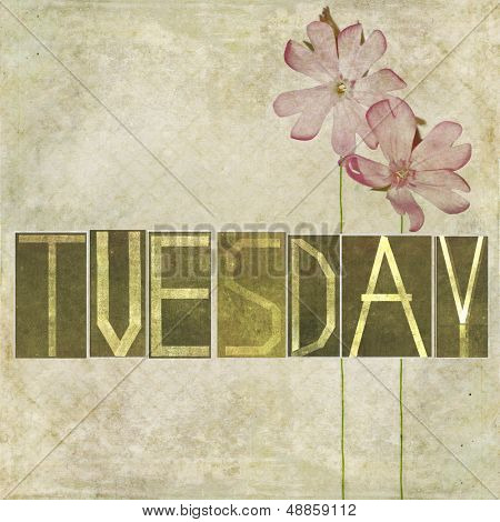 "Earthy texture background and design element depicting the word ""Tuesday"""
