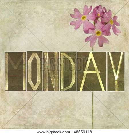 """Earthy texture background and design element depicting the word """"Monday"""""""