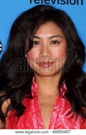LOS ANGELES - AUG 4:  Liza Lapira arrives at the ABC Summer 2013 TCA Party at the Beverly Hilton Hotel on August 4, 2013 in Beverly Hills, CA