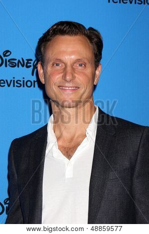 LOS ANGELES - AUG 4:  Tony Goldwyn arrives at the ABC Summer 2013 TCA Party at the Beverly Hilton Hotel on August 4, 2013 in Beverly Hills, CA