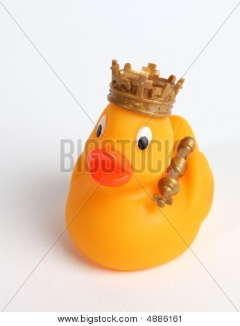 King Of Ducks