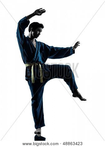 one asian young man exercising martial arts karate vietvodao in silhouette studio isolated on white background