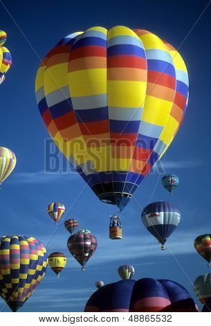 Hot Air Balloons Agaisnt Blue Sky