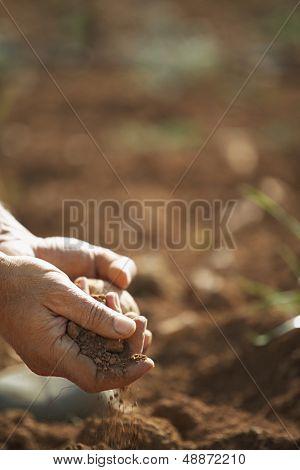 Closeup of farmer's hands holding soil on fertile land in farm