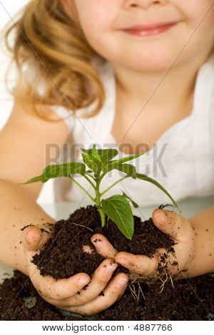 Little Girl Holding A Young Plant In Soil - Closeup