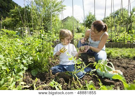 Mother and son gardening together in an allotment
