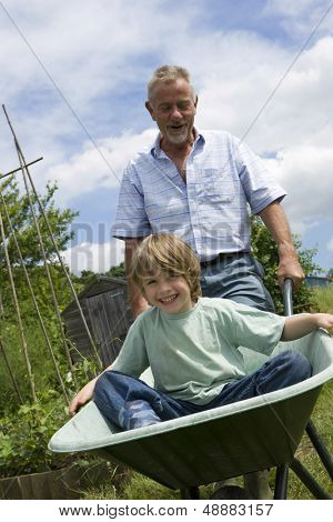 Grandfather giving grandson ride in wheelbarrow in community garden