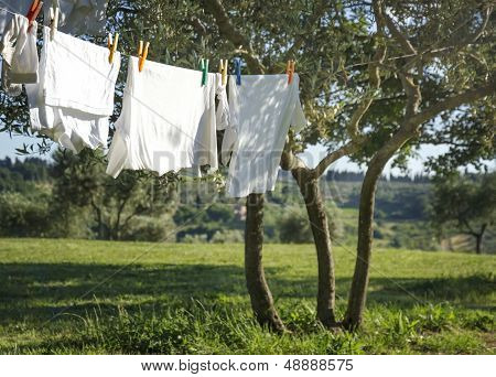 T-shirts And Other Laundry Drying On A Clothesline