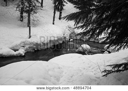 Winter Creek Landscape