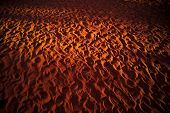 stock photo of uluru-kata tjuta national park  - Many footprints in the sand at Kata Tjuta national park - JPG