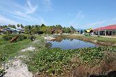 image of langkawi  - Landscape of the island of Langkawi - JPG