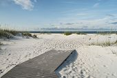 picture of sea oats  - Beach boardwalk footpath meets the sand on beautiful Gulf Coast beach in the early morning - JPG