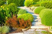 stock photo of public housing  - Landscaping in the garden - JPG