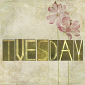 picture of tuesday  - Earthy texture background and design element depicting the word  - JPG