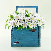 Wood Anemones In A Blue Wooden Basket