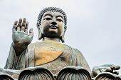 picture of buddha  - Tian Tan Buddha also known as the Big Buddha is a large bronze statue of a Buddha - JPG