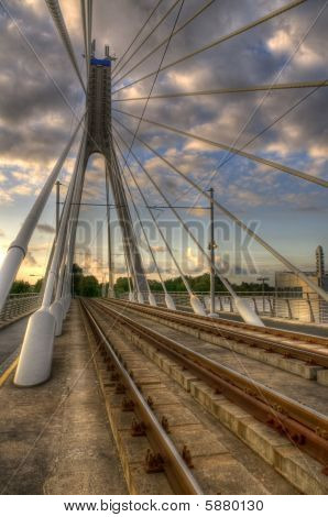 Sprawling Bridge Cables