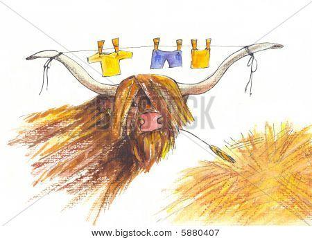 Bull. Drawing