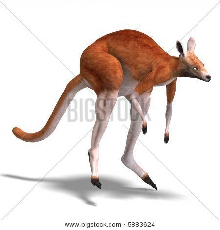 Canguru vermelho grande