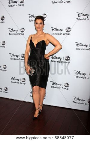 LOS ANGELES - JAN 17:  Bellamy Young at the Disney-ABC Television Group 2014 Winter Press Tour Party Arrivals at The Langham Huntington on January 17, 2014 in Pasadena, CA