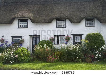 Cottage und Garten