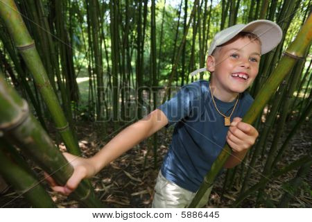 Boy in Bambushain in Sotschi arboretum