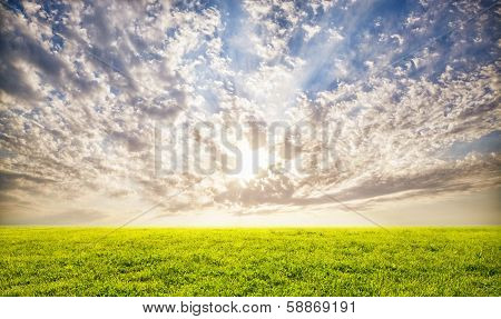 Green Grass And Sunset Sky Background
