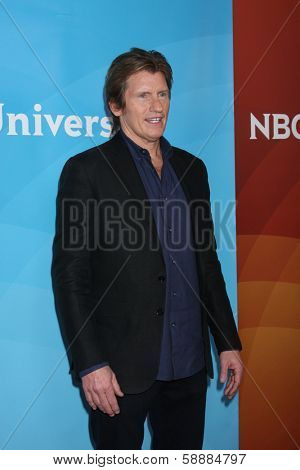 LOS ANGELES - JAN 19:  Denis Leary at the NBC TCA Winter 2014 Press Tour at Langham Huntington Hotel on January 19, 2014 in Pasadena, CA