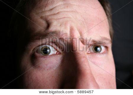 Wondering Eyes Closeup