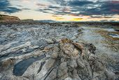 image of curio  - Ancient petrified forest on the coast at Curio Bay - JPG