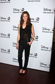 LOS ANGELES - JAN 17:  Devin Kelley at the Disney-ABC Television Group 2014 Winter Press Tour Party