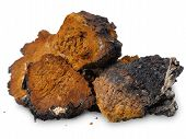 image of white bark  - Several pieces of chopped chaga  - JPG