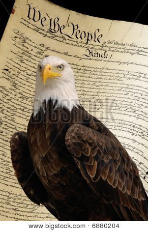 Bald Eagle, Constitution Background