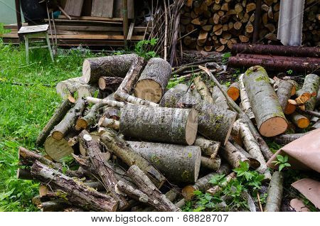 Pile Of Chopped Logs Branche To Woodshed In Garden