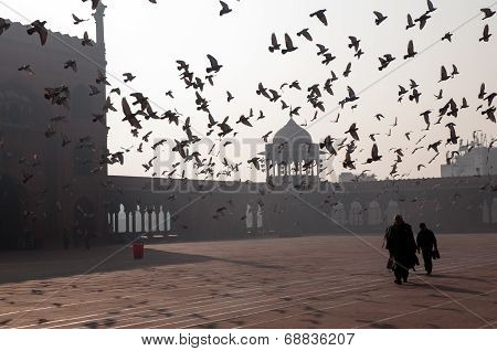 Early morning in Old Delhi